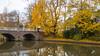 Autumn in Utrecht (HansPermana) Tags: utrecht netherlands niederlande holland reflection water canal autumn herbst autumnleaves brücke bridge city eu europe europa 2017