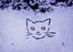 My personal Snow Cat (pianocats16) Tags: snow winter cat kitty own sketch