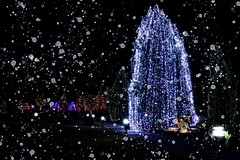Let it Snow ... (mariola aga) Tags: xmas night trees decorations lights black dark sky thegalaxy