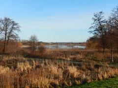 Nordborg sø (Landanna) Tags: nordborg nordborgsø als sønderjylland zuidjutland denmark denemarken danmark dänemark landscape landschap landskab winter vinter lake meer