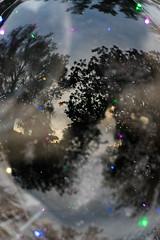 Christmas atmosphere (jiturbe) Tags: navidad christmas sky clouds tree mist arbol nubes neblina luces bokeh cielo lights