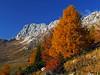 Altipiano di Montasio (Vid Pogacnik) Tags: italy italia julianalps montaž montaz iofdimontasio hiking outdoors landscape mountain autumn larch