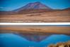 (Sebtaui2010) Tags: desert flamenco lago atacama bolivia agua volcan