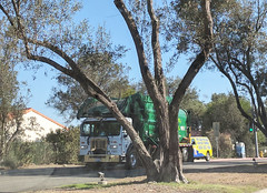 WM Garbage Truck 12-19-17 (Photo Nut 2011) Tags: sandiego california sanitation wastedisposal garbagetruck trashtruck refuse waste junk truck garbage wastemanagement ranchobernardo