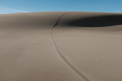 (Gary Sharp) Tags: tracks bicycle fujifilm x100f dellenbacktrail oregon sanddunes