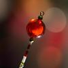 Christmas decoration detail (dakonst (catching up)) Tags: christmasdecoration december2017 flashexp bokeh canon6d konstantinosdaskoulias macro img75011 merrychristmas