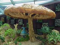 The Blue Dress and Brown Mushroom (Steve Taylor (Photography)) Tags: art sculpture blue brown green gravel girl asia singapore succulent fungi mushroom toadstool big huge texture flowerdome aliceinwonderland gardensbythebay