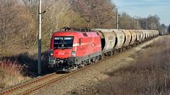 1116 016 (szocsiandris) Tags: railcargogroup railcargoaustria railcargohungary rcg rca rch 016 1116 taurus öbb transcereale