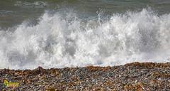 Point Of Ayre, Isle of Man. UK (staneastwood) Tags: isleofman im lighthouse pointofayre staneastwood stanleyeastwood ocean wave sea water beach shore seashore pebbles seaweed spray seaspray