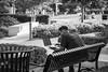 laptopping (fallsroad) Tags: tulsaoklahoma guthriegreen urban city park people person street man bench laptop blackandwhite bw monochrome