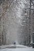 Passeggiando nel bianco - They were walking in the white. (sinetempore) Tags: torino turin neve snow alberi trees corsomassimo parcodelvalentino street strada amore love amanti lovers coppia passeggiata walk lampioni streetlamp freddo cold passeggiandonelbianco theywerewalkinginthewhite