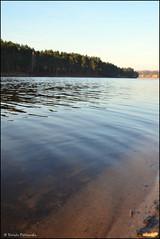 DSC_7046 (facebook.com/DorotaOstrowskaFoto) Tags: rejów skarżyskokamienna zalew zalewrejowski plaża drzewa woda świętokrzyskie poland spacer