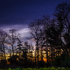 Last light of 2017 (cogy) Tags: sunset dusk last light 2017 new year eve end years colour trees tree sky cloud