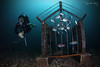 C A G E (Randi Ang) Tags: gili meno islands island lombok indonesia gilimeno giliislands underwater scuba diving dive photography wide angle randi ang canon eos 6d fisheye 15mm randiang