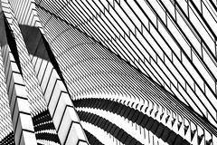 Calatrava Abstract (Blende1.8) Tags: abstract abstrakt architecture architektur liègeguillemins liège roof lines curves shadows shadow schatten licht light carstenheyer mono monochrome monochrom sony alpha ilce7m2 a7m2 a7ii 85mm emount urban construction belgien belgium graphical grafisch graphic station bahnhof muster pattern