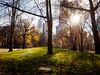 Central Park (Web-Betty) Tags: nyc newyork newyorkcity manhattan city urban bigapple centralpark park