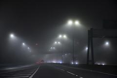 Foggy (Roger.C) Tags: fog foggy mist murky motorway motoring drive driving m4 road roads car cars lights grey night nightout highiso grainy noise transport nikon d610 tamron 2470mm