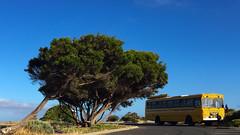 Gnarabup Bus (Digital Salt) Tags: australia bus streetphotography iphone6plus street gnarabup aus