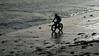 Fatbike silhouette (Oliver Townsend) Tags: alnmouth northumberland wintersun lumixgh5