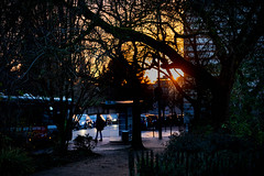 Atmosphere matinale... (hedes) Tags: matin sunset alpha9 85mmgmaster 85mm14 bus arret