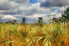Friday farm fence (holly hop) Tags: fence fencefriday farmfence paddockfence paddock farm australia centralvictoria sky clouds 2017 nosnow abctvweather cloudscape dry drygrass fluffyclouds golden grass hff hot summer whiteclouds