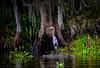 "Blue Heron on the swamp Bayou L'Ours - Kraemer LA (mbell1975) Tags: thibodaux louisiana unitedstates us blue heron swamp bayou lours kraemer la neworleans new orleans nola ""la nouvelleorléans"" nouvelleorléans nueva nuova water mississippi river waterway canal stream creek run blueheron bird wildlife crane"