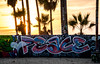 Peace Graffiti & Palm Trees Silhouette -  Venice Beach, CA (ChrisGoldNY) Tags: friendlychallenges challengewinners chrisgoldny chrisgoldphoto chrisgoldberg bookcover albumcover licensing forsale venice venicebeach california losangeles la socal westcoast usa america graffiti streetart sony sonyalpha sonya7rii sonyimages