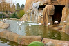 IMG_3192_copy (sinanaydin.net) Tags: eskişehir park hayvanat bahçesi zoo sazova animal
