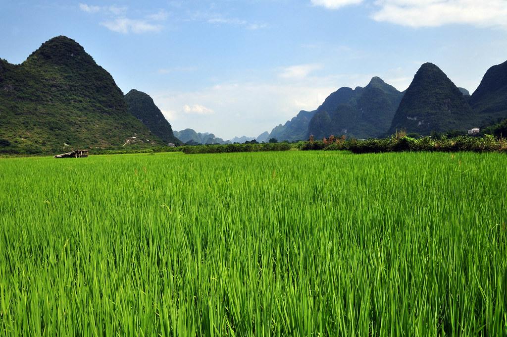 Karst landskap er på begge sidene av grensen mellom Vietnam og Kina