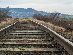 railway7 (Dreamaxjoe) Tags: vasút celldömölk iparvágány elhagyatott railway outofservicerailroadtrack aftersunrise napfelkelteután