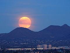 New Year Super Moon (lloydboy52) Tags: newyearsupermoon newyear newyearsday 2018 supermoon moon moonrise scottsdale arizona