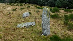 Photo of Pitmudie stone row