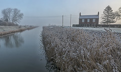 Frosty Fenland morning (David Feuerhelm) Tags: nikkor frost wideangle landscape light serene reeds house river trees podehole lincolnshire nikon d7100 nikkor1685mm
