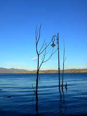 A tree, a lamp and a lake (Ath76) Tags: ευρώπη ελλάδα μακεδονία λίμνη βεγορίτιδα άγιοσ παντελεήμονασ νερό φλώρινα πέλλα europe europa mediterranean mediterraneo méditerranée medelhavet greece grecia griechenland grèce grekland hellas macedonia macédoine macedon florina pella lake vegoritis lamp water tree makedonien makedonia lago lac