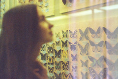butterfly caught (Lena Kanshyna) Tags: girl portrait summer butterfly butterfies vintage 35mm 35mmphotography exploring expiredfilm expired grain zenite zenitphoto zenit light love film filmphoto ukraine kanshyna kyiv kodakgold kiev magic museum nature beautiful