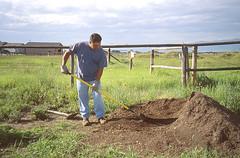Anglų lietuvių žodynas. Žodis landscape-gardening reiškia n sodų, parkų ir pan. planavimas lietuviškai.