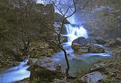 Fervenza de Belelle (Alphonso Mancuso) Tags: fervenza belelle neda ferrol ferrolterra galicia españa cascada waterfall verde nd coruña