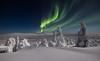 Finnish Lapland (Mikko Lönnberg) Tags: suomi sky finland night northernlights nightscape nightphotography nationalpark nature winter snow auroras auroraborealis arcticlights mikkolönnbergphotography