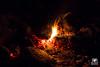 Fire camp (andrea.prave) Tags: ticino castellettodicuggiono castelletto parcodelticino lombardia lombardy natura nature 自然 eðli cuggiono fire fuoco fuego feu feuer 火災 огонь نار 火 brann notte night noche nacht ночь ليل 夜