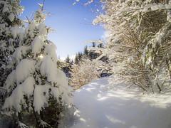 PC290037 (turbok) Tags: ennstal landschaft schnee schneeundeis stimmungen winter c kurt krimberger