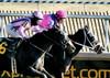 "2017-12-26 (62) r5 Weston Hamilton on #3 Tiz Surprised (on the inside) (JLeeFleenor) Tags: photos photography maryland md ""maryland races"" horse jockey جُوكِي ""赛马骑师"" jinete ""競馬騎手"" dżokej jocheu คนขี่ม้าแข่ง jóquei žokej kilparatsastaja rennreiter fantino ""경마 기수"" жокей jokey người horses thoroughbreds equine equestrian cheval cavalo cavallo cavall caballo pferd paard perd hevonen hest hestur cal kon konj beygir capall ceffyl cuddy yarraman faras alogo soos kuda uma pfeerd koin حصان кон 马 häst άλογο סוס घोड़ा 馬 koń лошадь laurelpark marylandraces races outdoors outside winter cold horaciokaramanos"