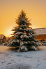 (ErrorByPixel) Tags: 16mm 162 samyang winter snow hirschfelde germany k5 pentax pentaxk5 light christmastree sundown sunset pentaxart 1620 ed as umc cs samyang1620edasumccs sunlight tree footsteps buildings sky zittau