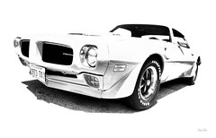 1973 TA... (Stu Bo) Tags: transam 1973 canon certifiedcarcrazy coolcar classiccar canonwarrior car sexonwheels highkey dreamcar musclecar showcar blackandwhite bw monotone oldschool onewickedride streetmachine sbimageworks vintageautomobile
