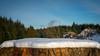 a treestump in the sun (grahamrobb888) Tags: perthshire birnamwoods cokin cold frost ice snow snowwoods sun trees winter woodland d800 nikond800 nikon nikkor nikkor50mmf18 birnamwood birnam peaceful perspective bokeh