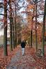 Sotto gli alberi - Under the trees. (sinetempore) Tags: alberi trees parcodelvalentino torino turin parco park uomo man autunno autumn passeggiare walk fogliesecche dryleaves street sottoglialberi underthetrees