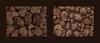For the Nut Strudel we don`t need Nuts and Bolts but Nuts and Potatoes - Walnuts Erdäpfeln Kartoffeln Grundbirnen (erntefrisch, Garten 2017) / Walnüsse - auf dem Weg zum Nußstrudel (hedbavny) Tags: garden garten allotment ernte harvest potato kartoffel erdäpfel grundbirnen nus nut walnus walnut schale shell texture haut skin erde erdig bodenständig erdfarben soil herkunft ursprung braun brown black schwarz beige tone sepia fruit frucht kern kernel samen seed obst gemüse vegetables nachtschattengewächs knolle gitter grid steige stillleben stilllife food nahrung ungekocht roh zutaten zubereitung rezept frisch fresh erntefrisch herbst autumn winter color farbe mischung mischen monochrom hedbavny ingridhedbavny wien vienna austria österreich