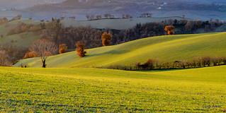 colline di San Severino Marche al tramonto