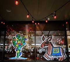 Rudolfo the Red Nosed Burro (Amanda SG) Tags: christmastree texmex texas austin northaustin jardincorona restaurant windowpaint patio decorations lights christmas rednosed rudolfo rudolph mule donkey burro cute