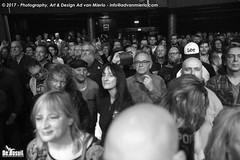 2017 Bosuil-Het publiek bij The Road Home en Vandenberg's Moonkings 7-ZW