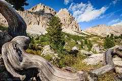 Dolomiti (Arnold van Wijk) Tags: geo:lat=4651992556 geo:lon=1200814489 geotagged italië livinallongodelcoldilana veneto ita landscape landschap dolomieten dolomiti dolomites italy italia italie mountain bergen natuur nature